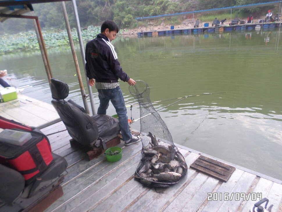 fish_pay_09002336.jpg