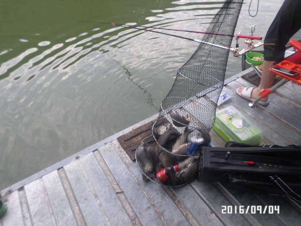 fish_pay_09002729.jpg