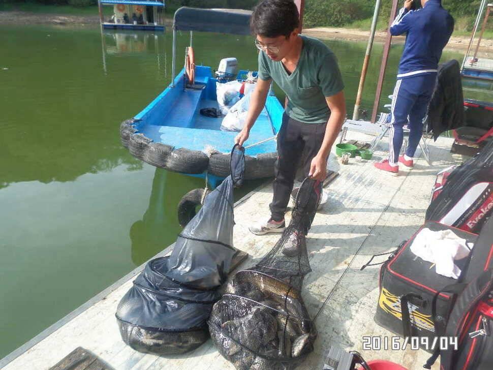 fish_pay_09005957.jpg