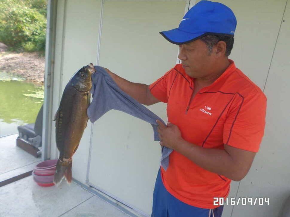 fish_pay_09011451.jpg