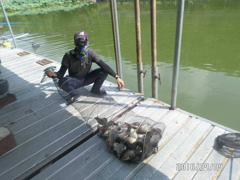 fish_pay_09011990.jpg