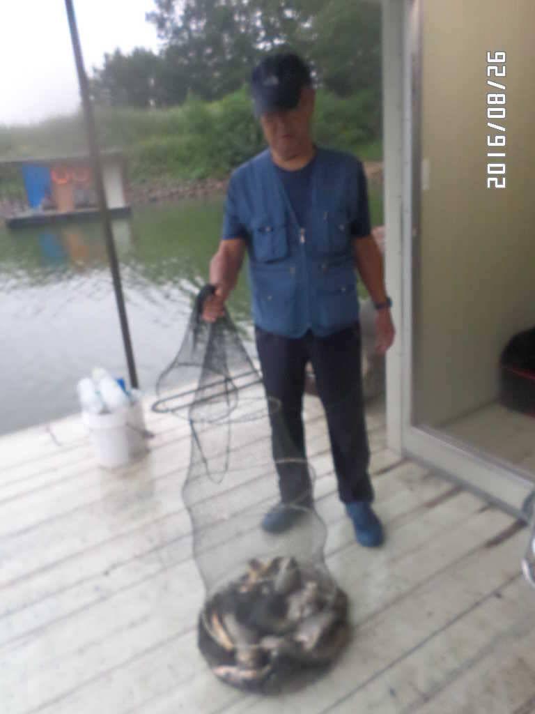 fish_pay_0905408.jpg