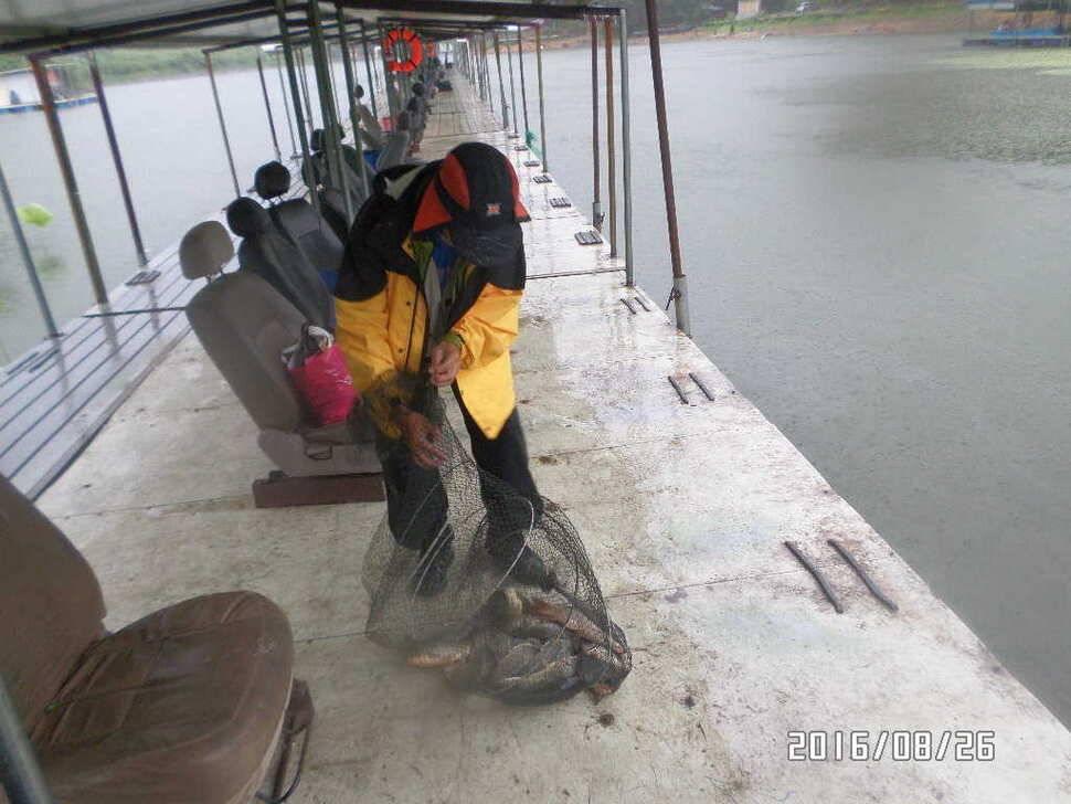 fish_pay_09055632.jpg