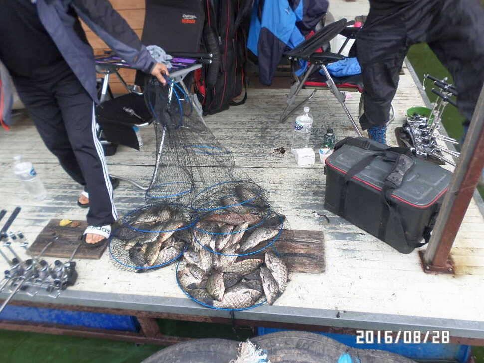 fish_pay_09080820.jpg