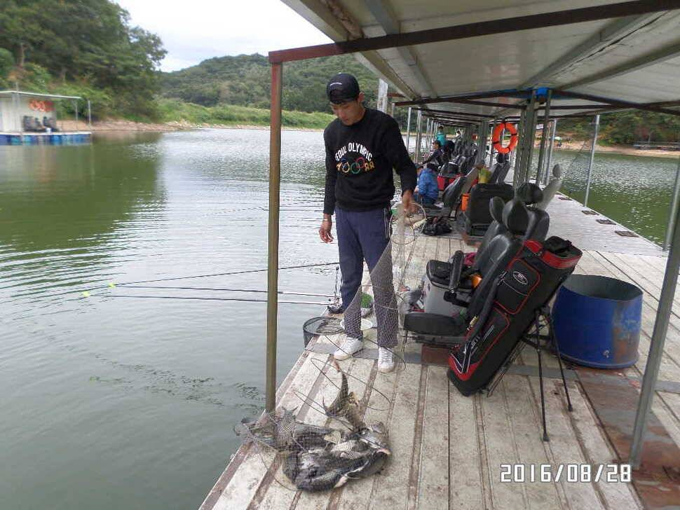 fish_pay_0908198.jpg