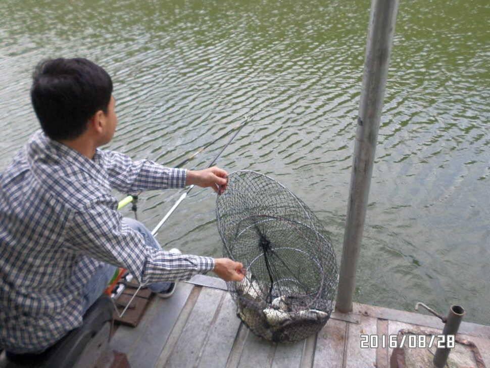 fish_pay_09083243.jpg