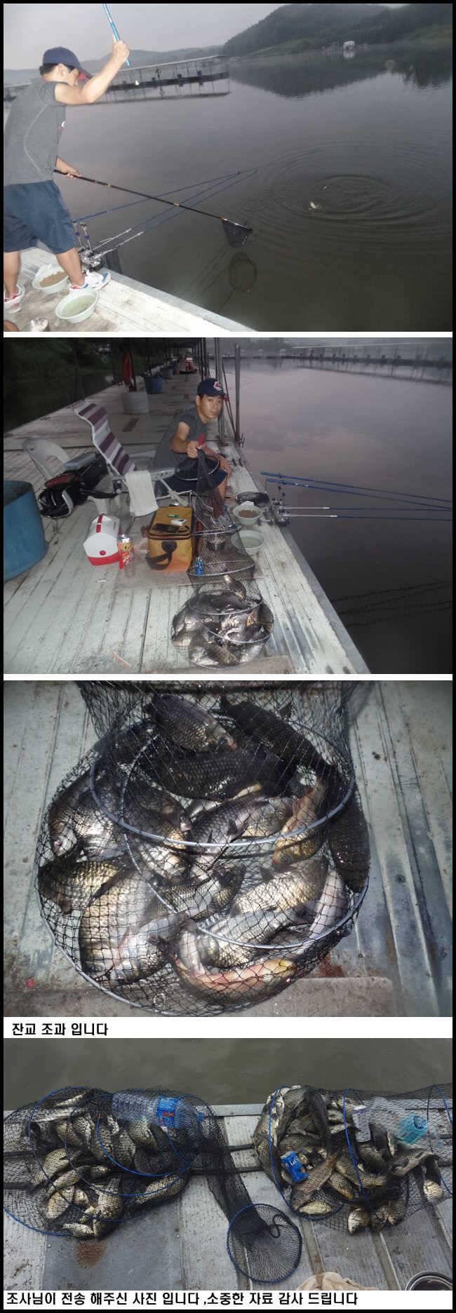 fish_pay_09102542.jpg