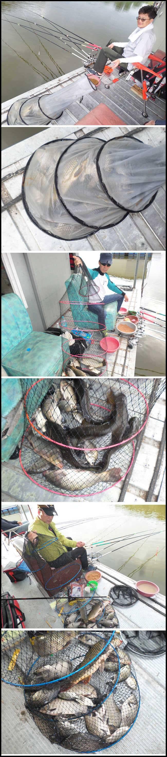 fish_pay_09125823.jpg