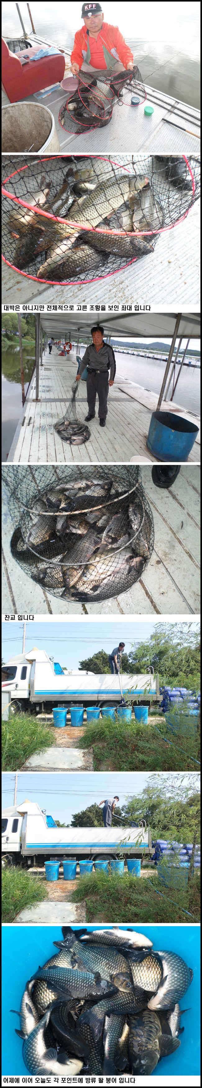 fish_pay_09130133.jpg