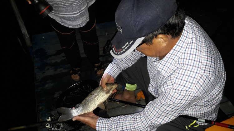 fish_pay_09225962.jpg