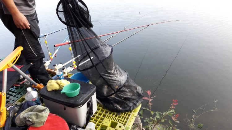 fish_pay_09231280.jpg