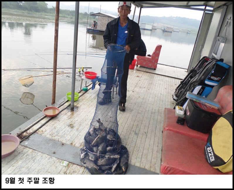 fish_pay_09324779.jpg