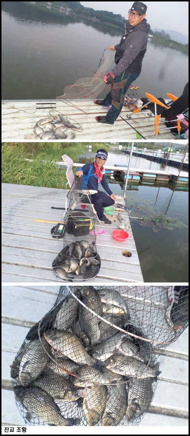fish_pay_09325794.jpg