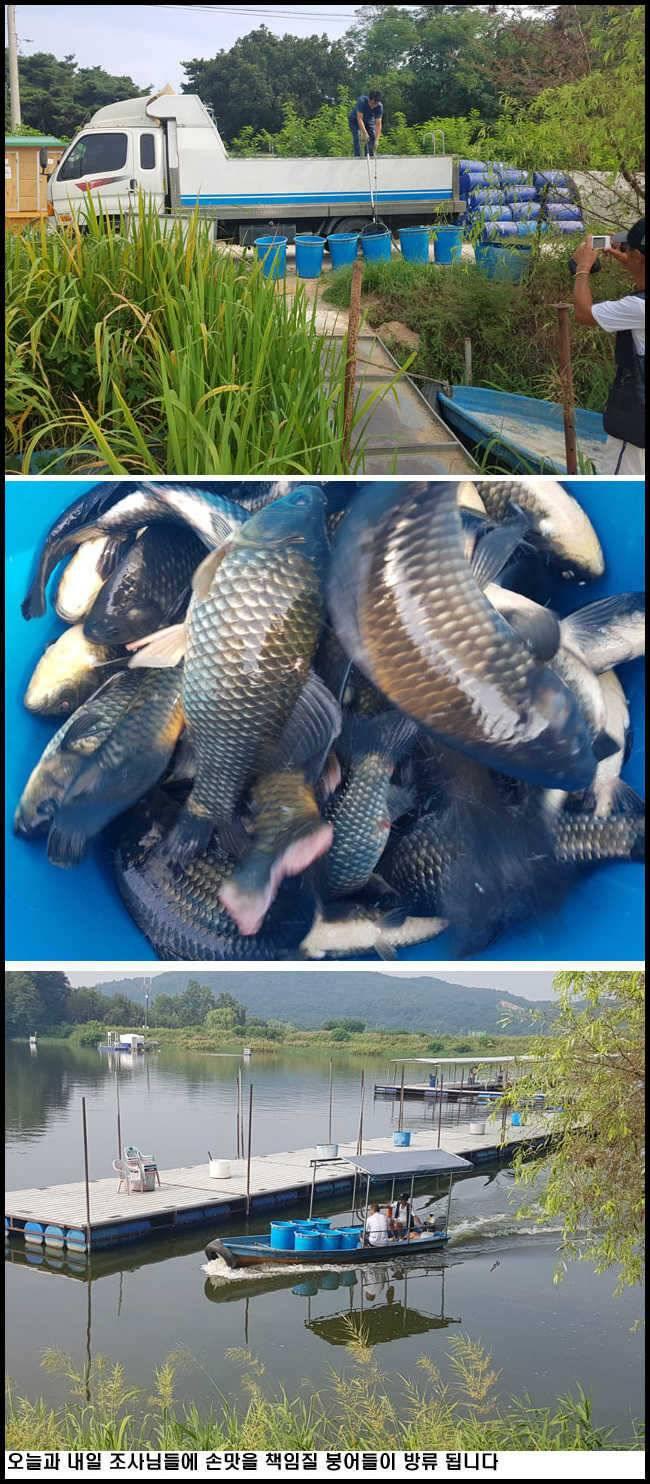 fish_pay_09464339.jpg