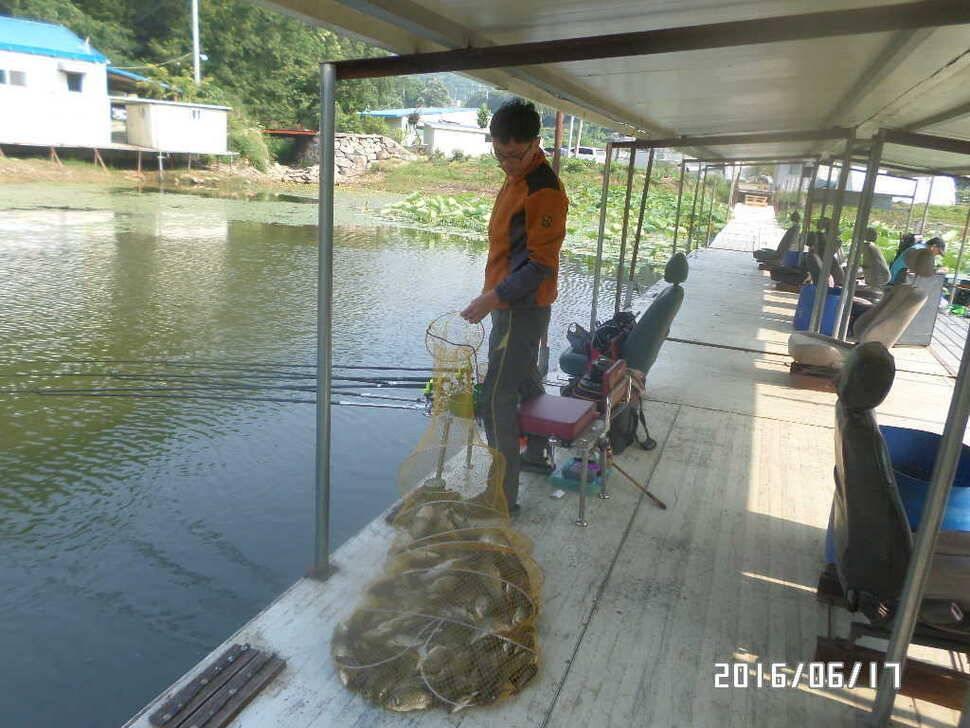fish_pay_09524984.jpg