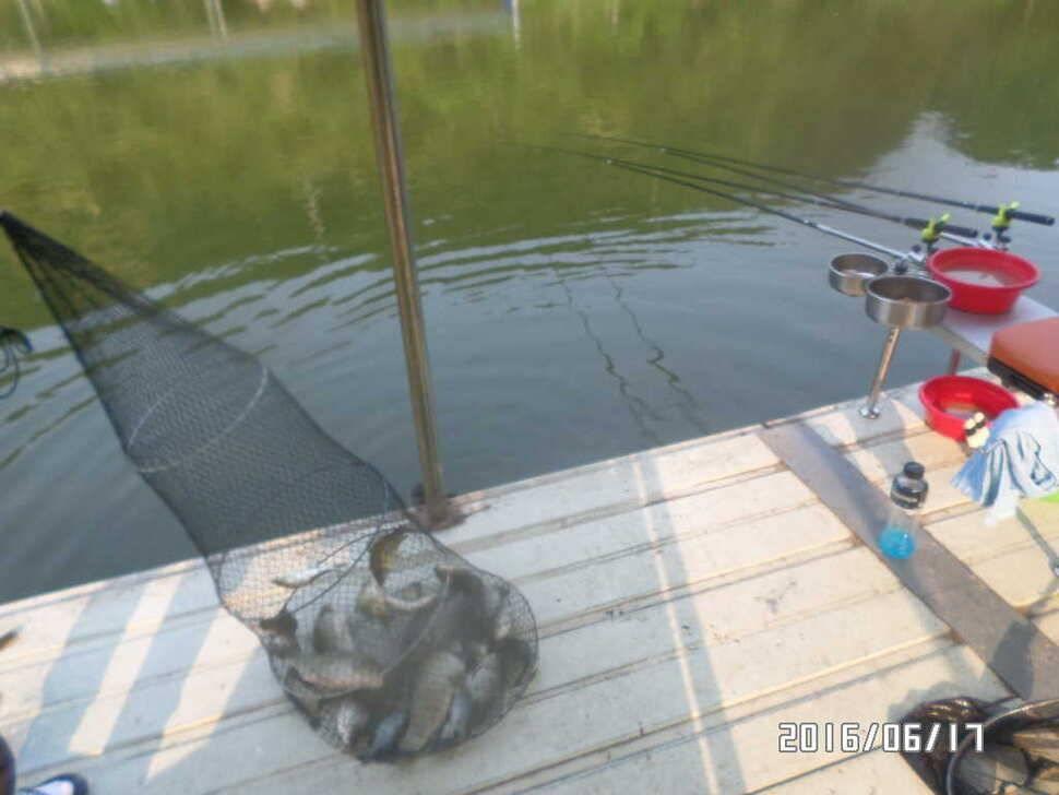 fish_pay_09530966.jpg