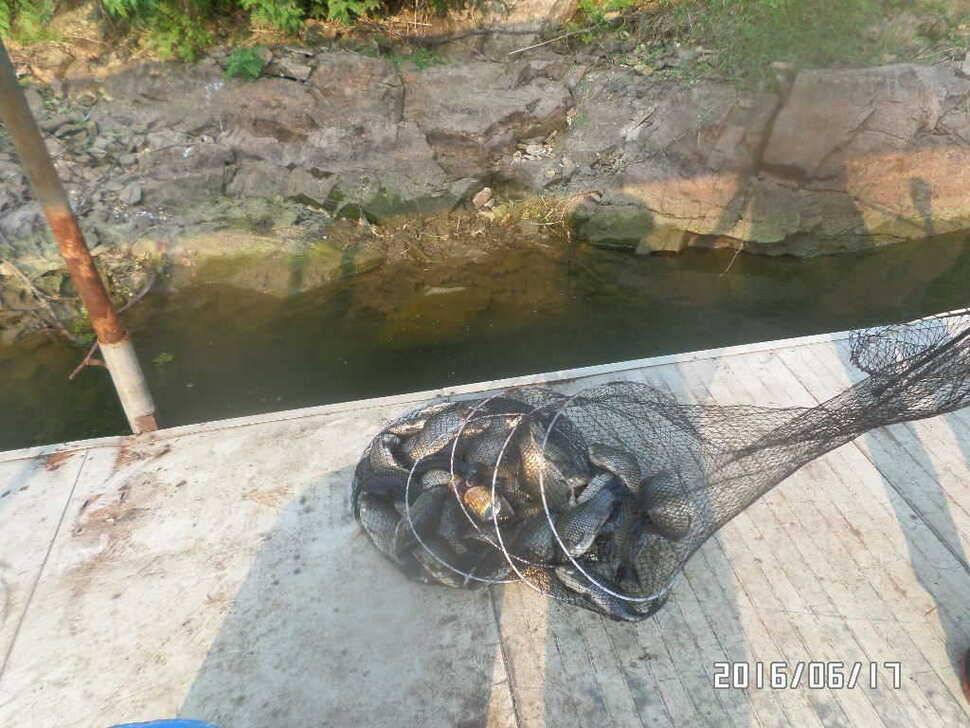 fish_pay_09531366.jpg
