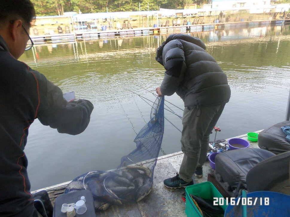 fish_pay_09532479.jpg