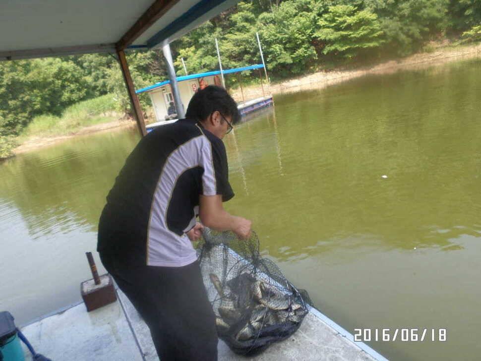 fish_pay_09534044.jpg