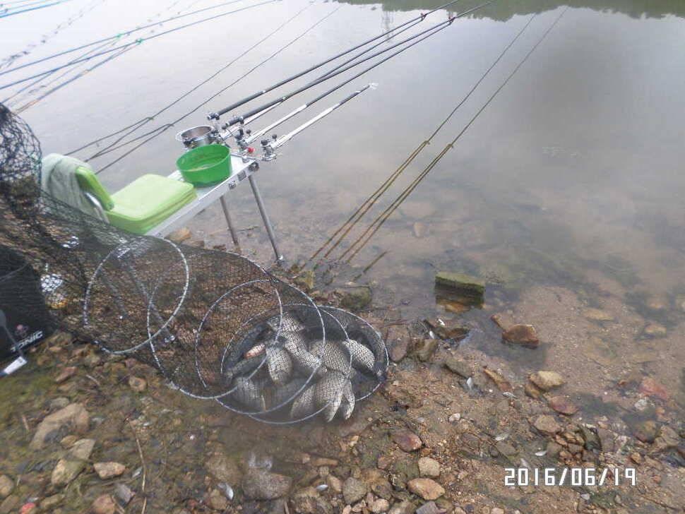 fish_pay_09541573.jpg