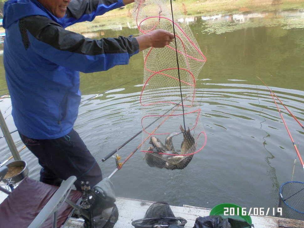 fish_pay_09543242.jpg