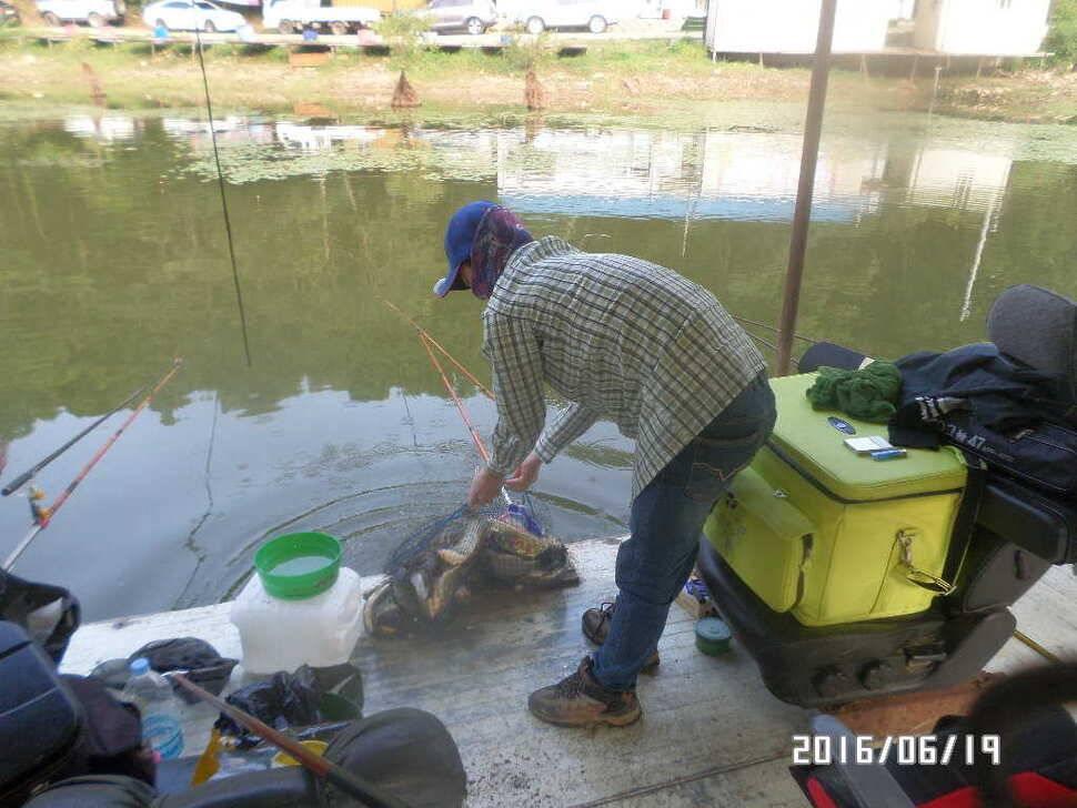fish_pay_09544114.jpg