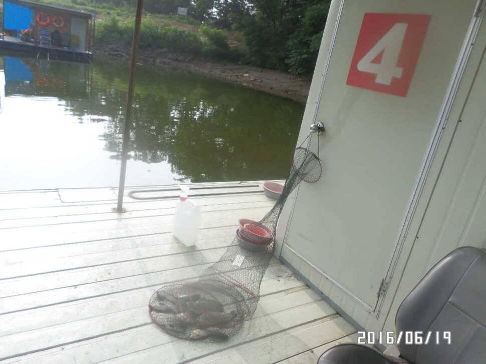 fish_pay_09544627.jpg