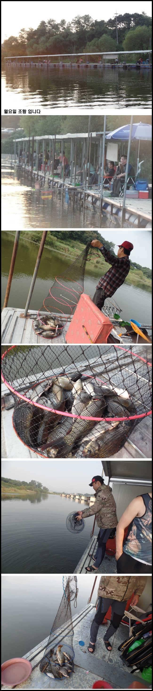 fish_pay_10041957.jpg