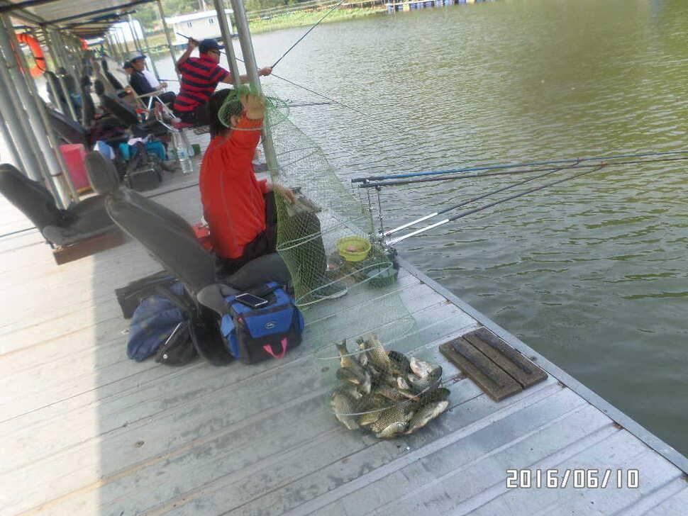 fish_pay_10153328.jpg