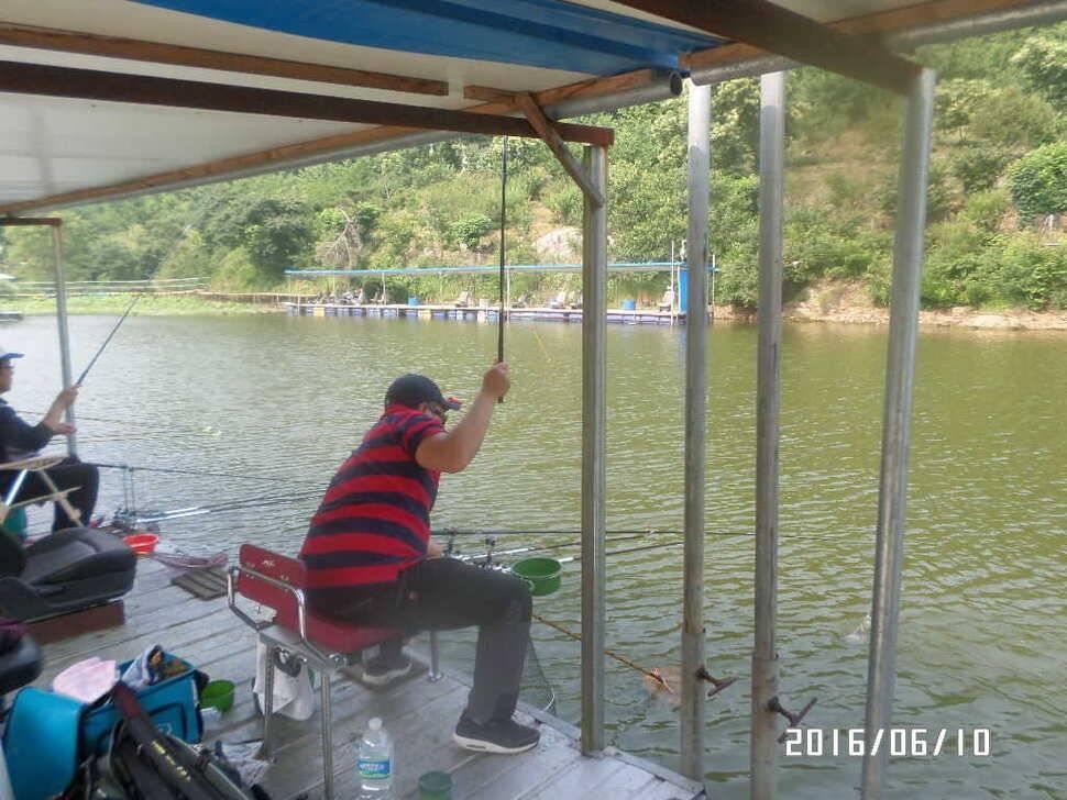 fish_pay_10153988.jpg