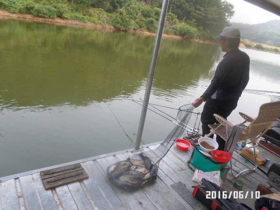 fish_pay_1015455.jpg