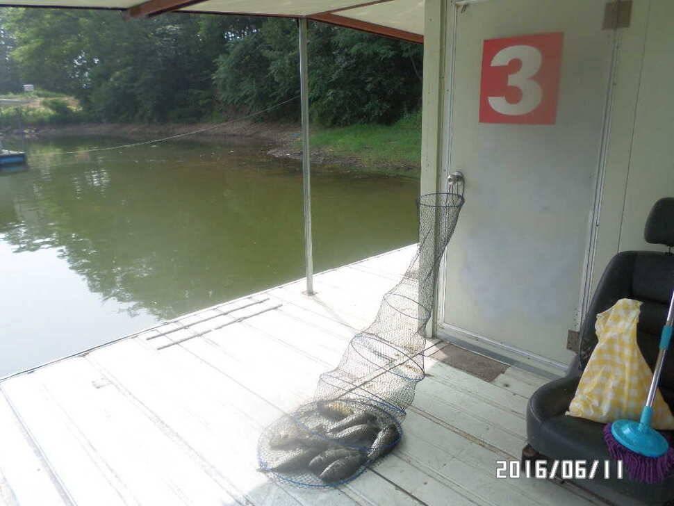 fish_pay_10161229.jpg