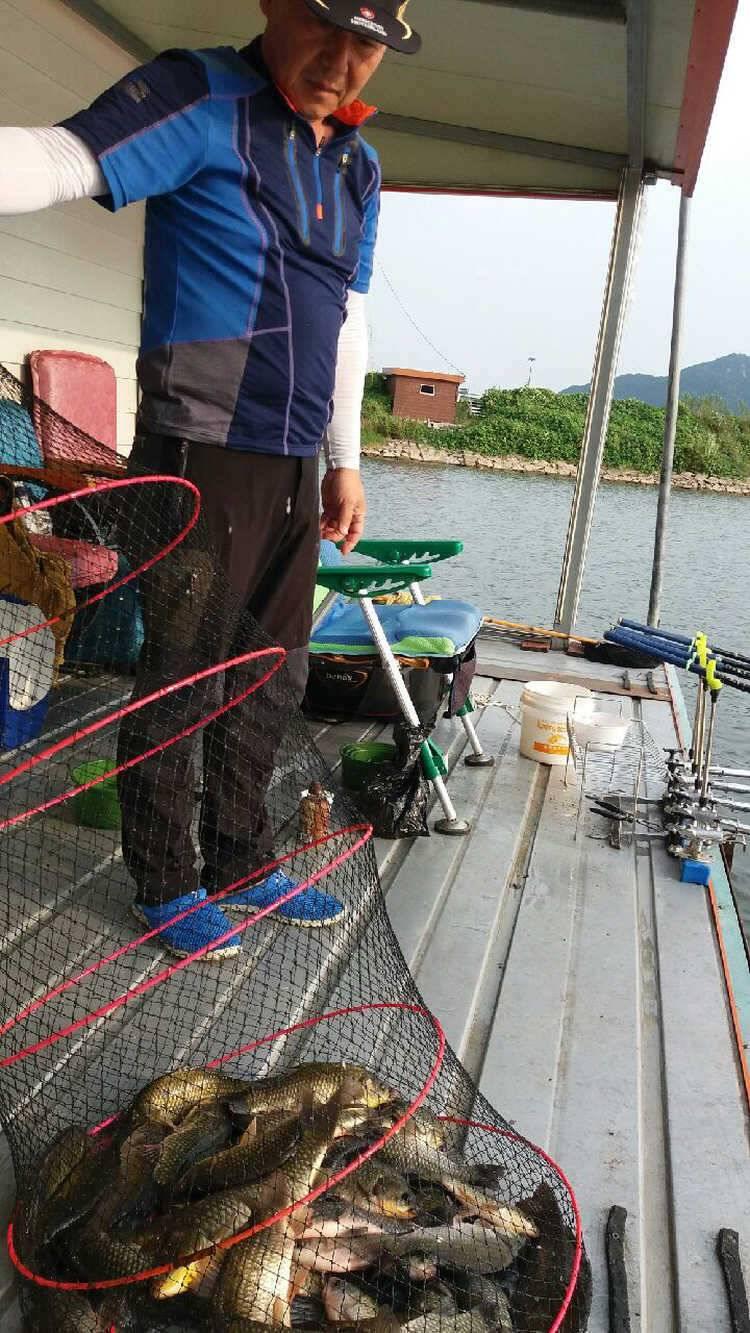 fish_pay_1016307.jpg
