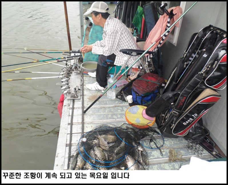 fish_pay_1016378.jpg