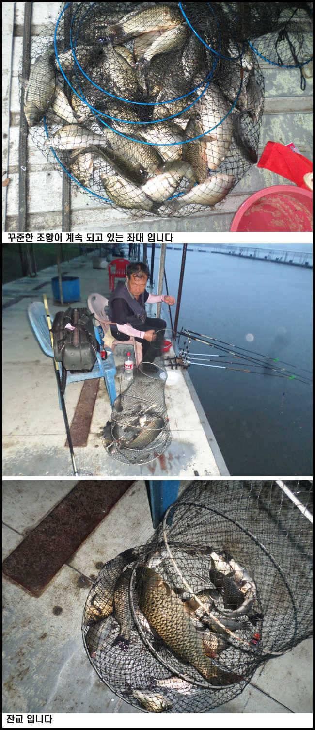 fish_pay_10164389.jpg