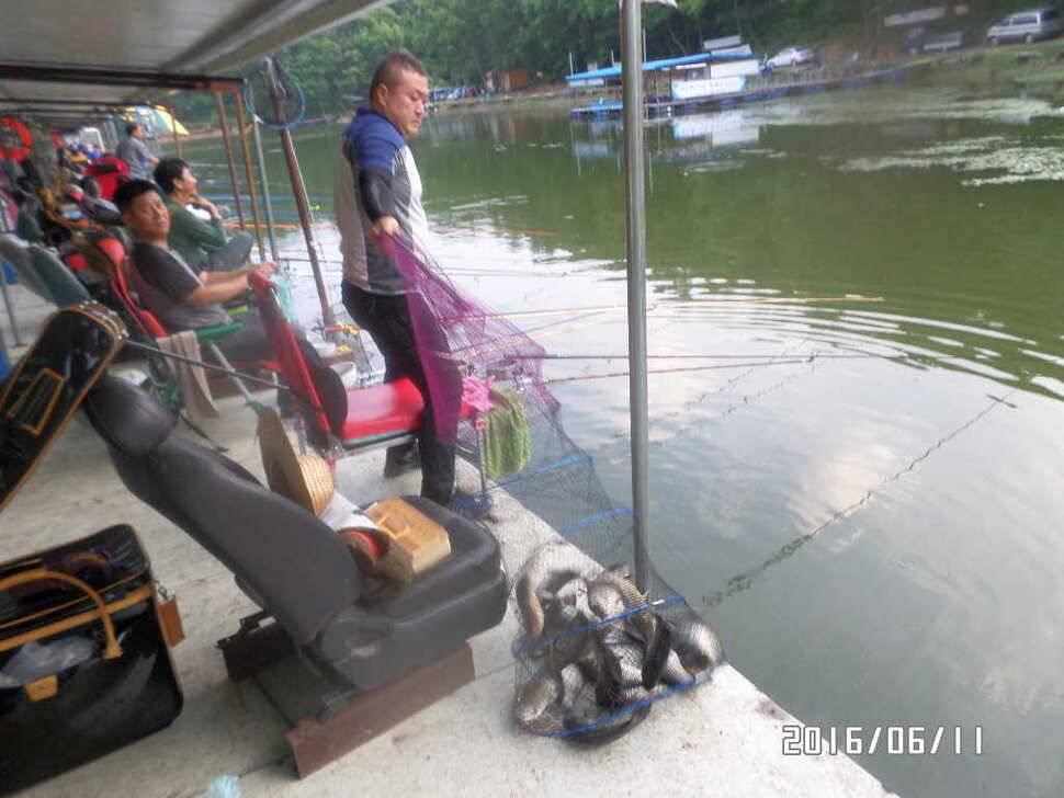 fish_pay_10164593.jpg