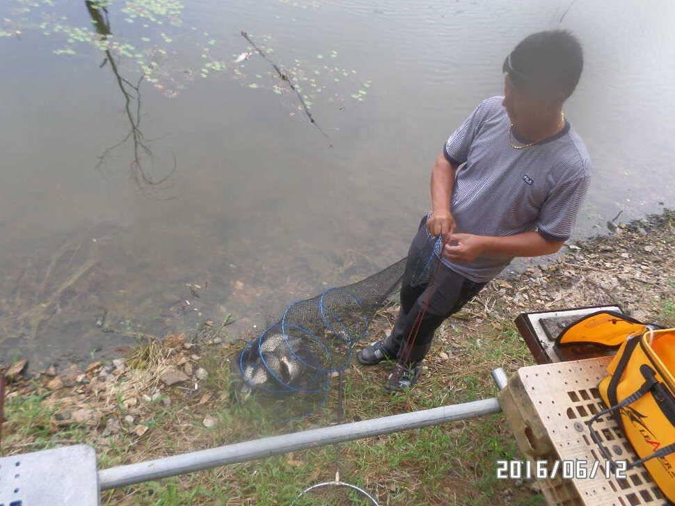 fish_pay_10180997.jpg