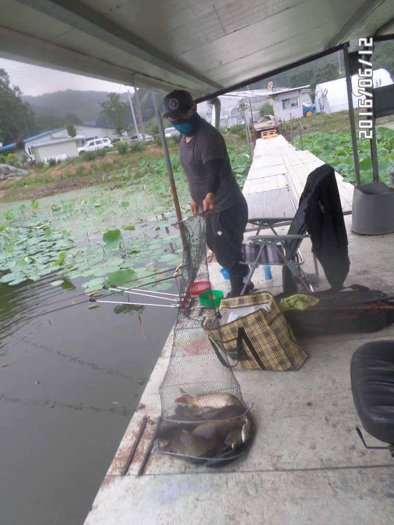 fish_pay_1018332.jpg