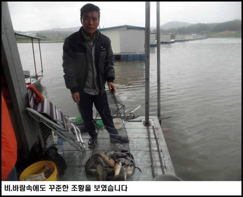 fish_pay_10210369.jpg