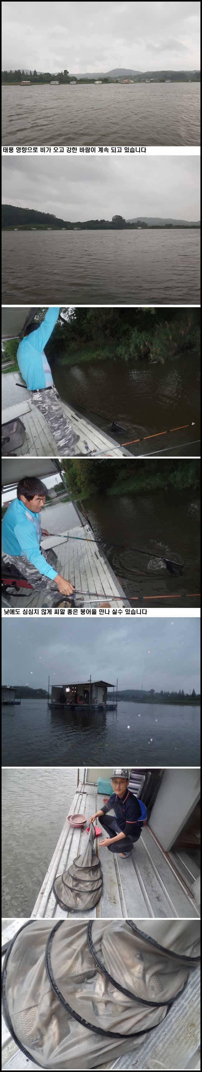 fish_pay_10210684.jpg