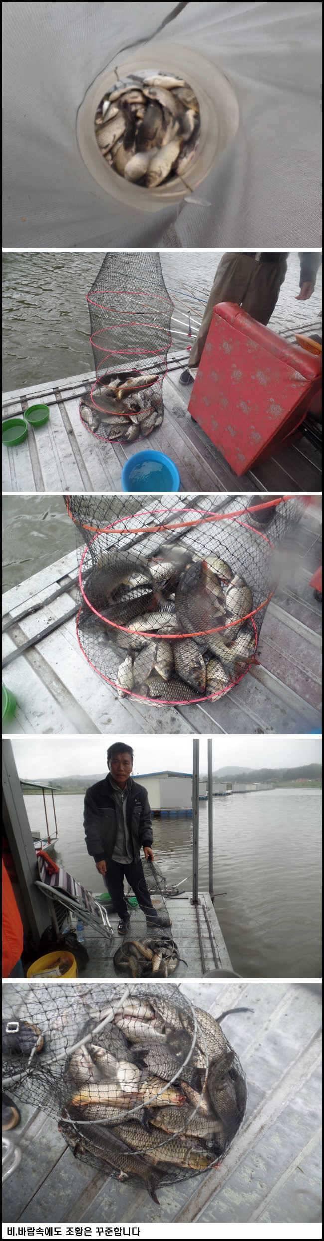 fish_pay_10210991.jpg