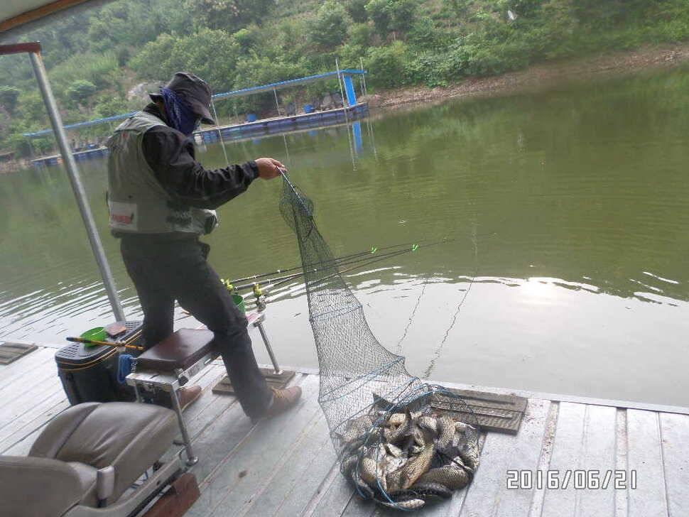 fish_pay_10260696.jpg