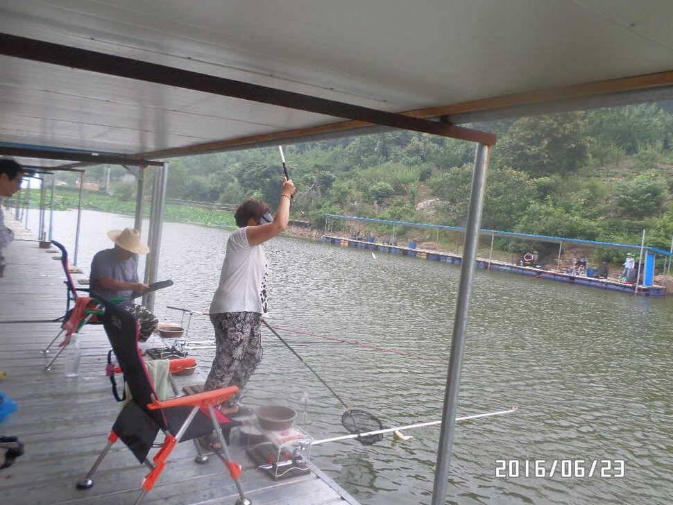 fish_pay_10264317.jpg