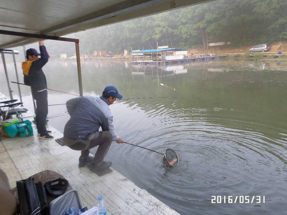 fish_pay_10314788.jpg