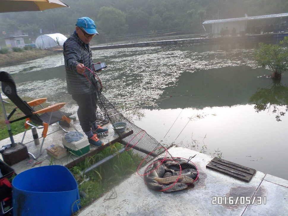 fish_pay_10315328.jpg
