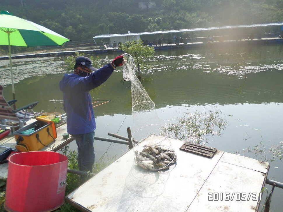 fish_pay_10320317.jpg