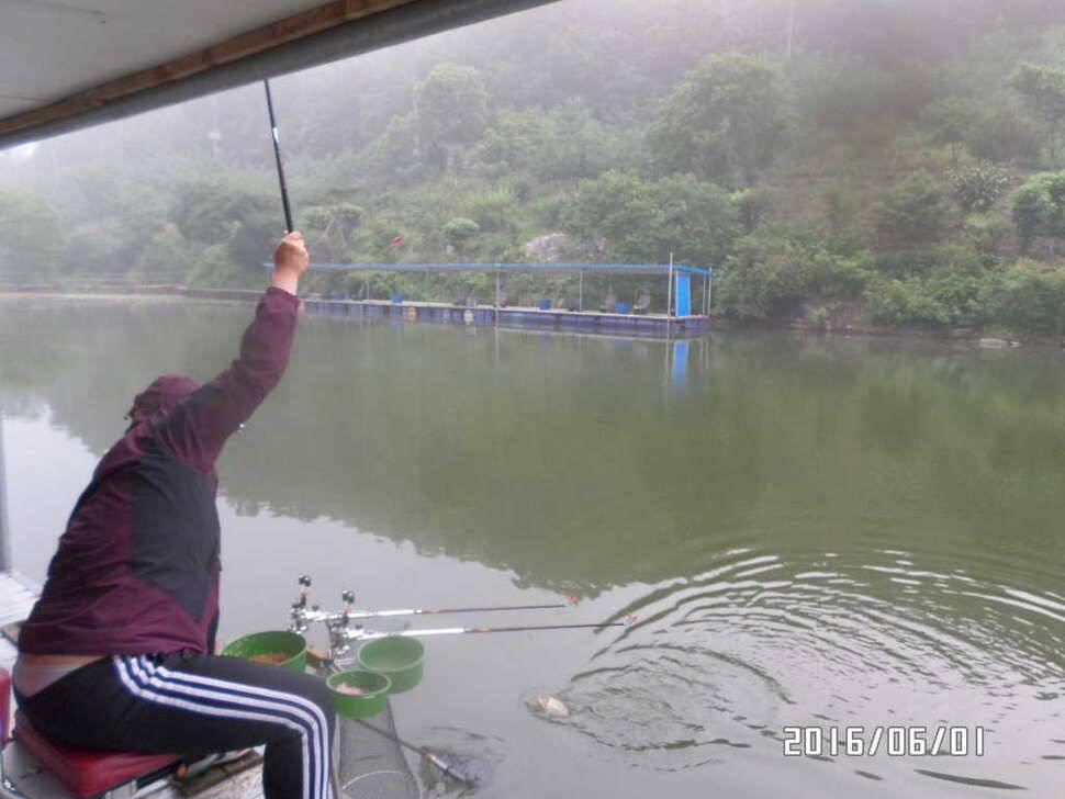 fish_pay_10322486.jpg