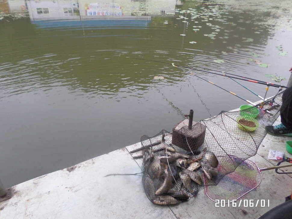 fish_pay_10323770.jpg