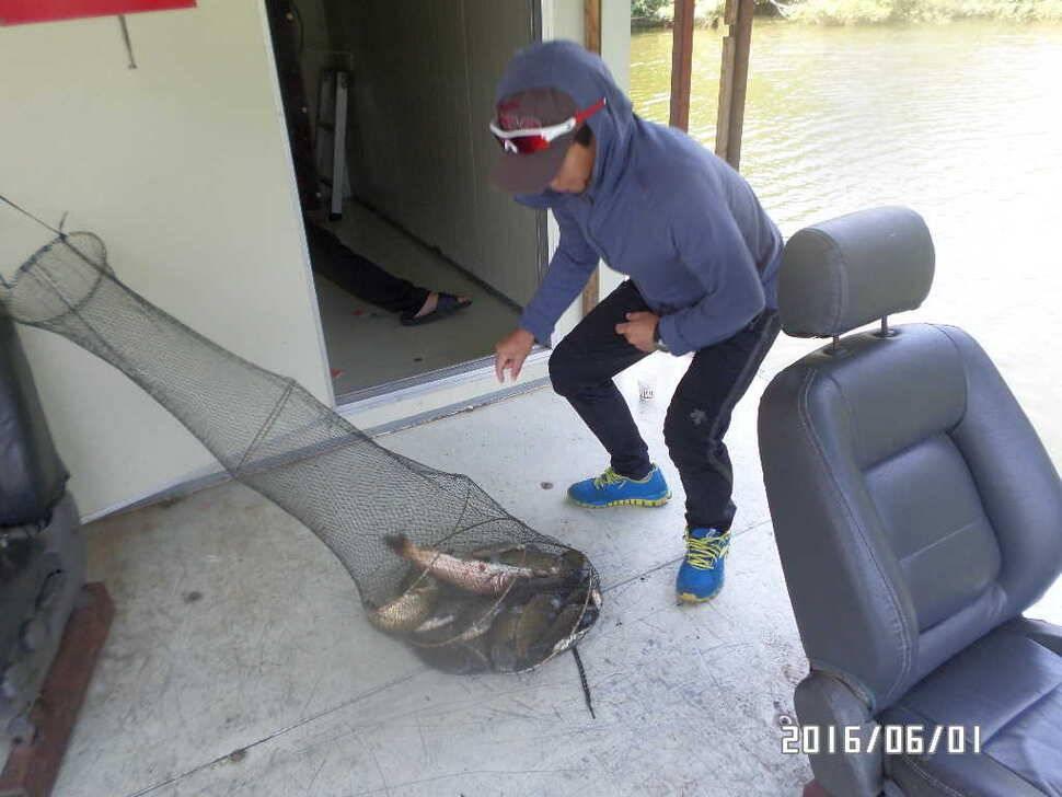 fish_pay_10325345.jpg