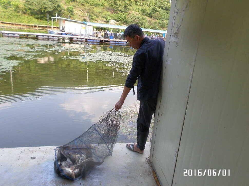 fish_pay_1033023.jpg